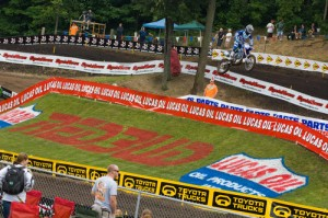 Red Bud!