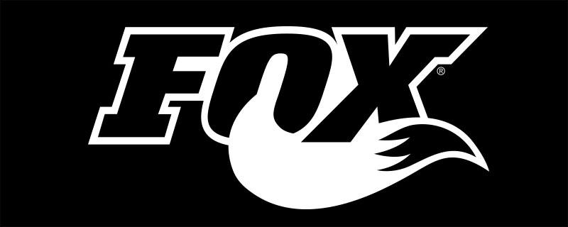 fox-shox-slide